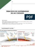Principios de sostenibilidad en las ciudades.pdf