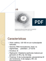 Coronavirus y Rhabdovirus