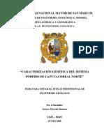 CARACTERIZACIÓN GENÉTICA DEL SISTEMA PÓRFIDO DE Cu PUCACORRAL NORTE.pdf