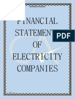 Financial Statements of Electricity Companies