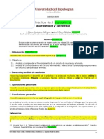 Plantilla Para Reportes DSM1 Echavez