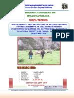 PROYECTO PRODUCPROYECTO DE TRUCHAS HUANCAVELICAIVO - HVCA