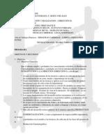 Dirección II 2009 (FUC)