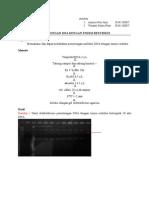 laporan restriksi.doc