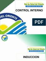 Induccion Control Interno