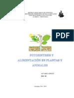 Fotosintesis - Alimentación en Plantas y Animales