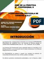 Practicas Pre Profesional II