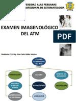 Examen Radiologico Del Atm Medicina II