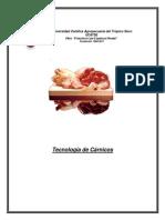 folleto-carnico-2011