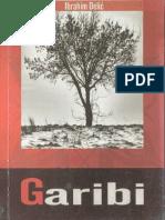 Garibi-IbrahimDelic