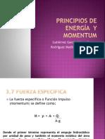 Principios de Energia y Momentum- Hidraulica II