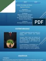 desarrollosustentable-130208215111-phpapp01
