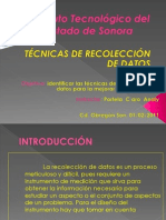 tecnicasderecolecciondedatos-110202115138-phpapp01.pptx