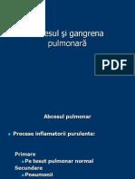 Supuratii Pulmonar3, Chist Hidatic