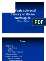 Cancer de Colon Curso Superior 1