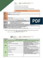 Instrumento Estructura de Proyecto Integrado