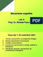 4 Lab Cog 6 7 Reprezentarea Gandirea Teme Memorie Radionament Inductiv