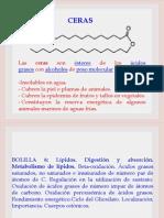 III Beta-oxidacion y Cpos. Cetonicos