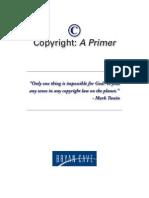 Copyrigdfdht Primer