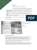 suelo-Campo de acción 2bgc.docx