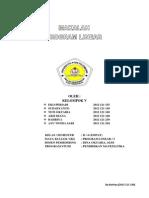 Program Linier