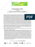 Combustion dcombustione Carbon(1)
