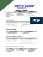 Apuntes Principios Básicos de La Formación Técnico Táctica de Un Jugador