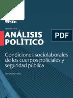Analisis Politico Seg. Publica
