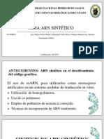 ARN SINTÉTICO (1) (1)
