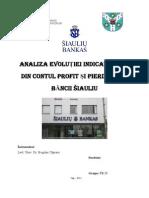 Analiza Evolutiei Indicatorilor Din Contul de Profit Si Pierdere Al Siauliu Bank