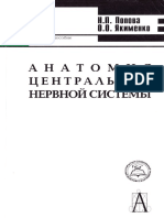 Анатомия центральной нервной системы Попова Н.П.