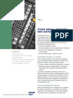 Process Overview PT SAP