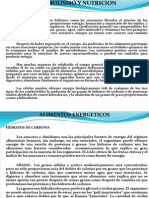 METABOLISMO Y NUTRICION.ppt