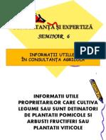 Sem 6 INFORM UTILE+consultanta.pdf
