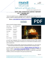 Sailing Sky on-Hire Survey Report Mundi