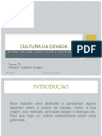 CULTURA Da Cevada