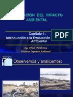 EIA.1.pdf