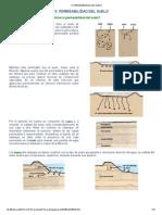 PERMEABILIDAD DEL SUELO.pdf