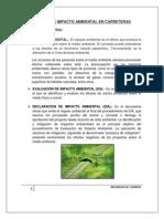 Estudio de Impacto Ambiental en Carreteras11