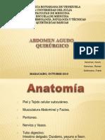 Abdomen Agudo Quirurgico (Inflamatorio y Perforativo)