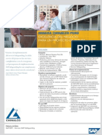 Chinalco (1).pdf