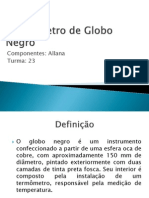 Termômetro de Globo Negro (1)