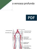 Trombembolismul_pulmonar