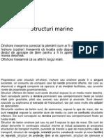 5 Structuri Offshore