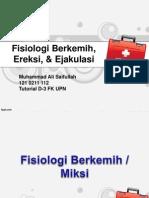 Fisiologi Berkemih, Ereksi, & Ejakulasi
