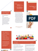 stages of labor brochure