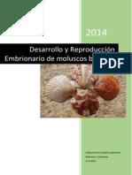 Reproducción bivalvos.docx