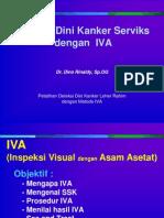 2. IVA