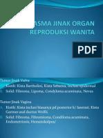 Neoplasma Jinak Organ Reproduksi Wanita