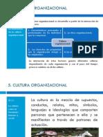 Unidad 5 Estructuras Organizacionales
